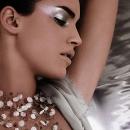 Новогодний серебряный макияж 2012